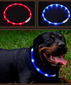 LED Dog Collar for Night Safe
