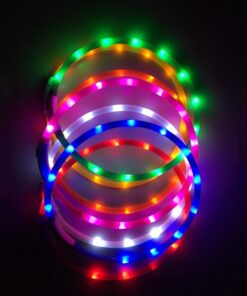 Multiple LED Dog Collars Illuminated
